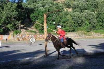 Giostra di cavalli e cavalieri