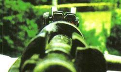 I cecchini nella grande guerra di Rocco Giammetta
