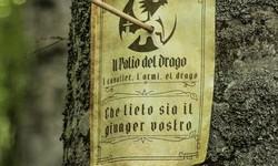 Palio del Drago
