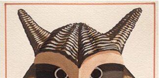 maschere antropologiche
