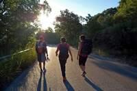 Cammino delle Ginestre