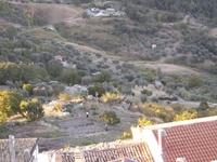 Celiberti P A 045.jpg