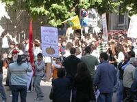Manifestazione 1  017.JPG