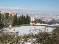 Nevicata dic 07  043.JPG
