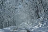 Nevicata dic 07 081.JPG
