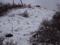 Nevicata 21 01 10 02.JPG