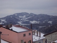Nevicata 21 01 10 05.JPG