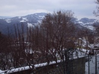 Nevicata 21 01 10 06.JPG