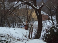 Nevicata 21 01 10 07.JPG