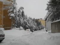 nevicata 09feb12  011.JPG