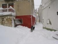 nevicata 09feb12  019.JPG