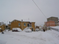 nevicata 09feb12 034.JPG