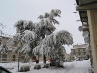 nevicata 09feb12  041.JPG