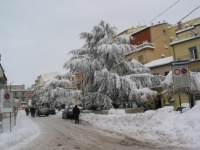 nevicata 09feb12 042.JPG