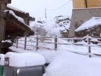 nevicata 09feb12 053.JPG