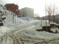 nevicata 09feb12 065.jpg