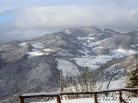 nevicata 10 feb 008.jpg