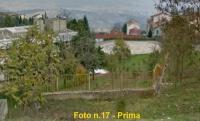 alberi ospedale  040.jpg