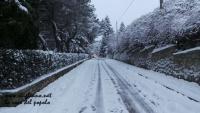 nevicata 27 feb 18_ 008.jpg
