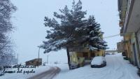 nevicata 27 feb 18_ 011.jpg
