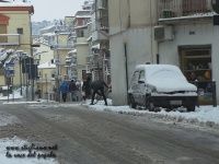 nevicata 27 feb 18_ 020.jpg